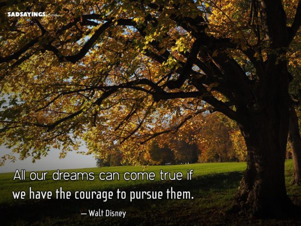 All our dreams can come true if we have the courage to pursue them. – Walt Disney