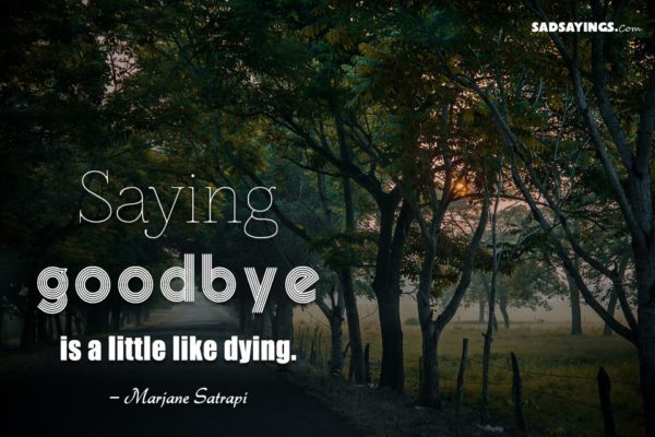 Saying goodbye is a little like dying